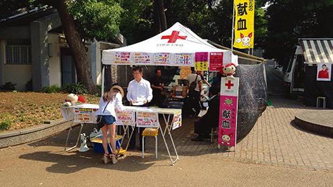 Blodterror mot japanska Röda Korset