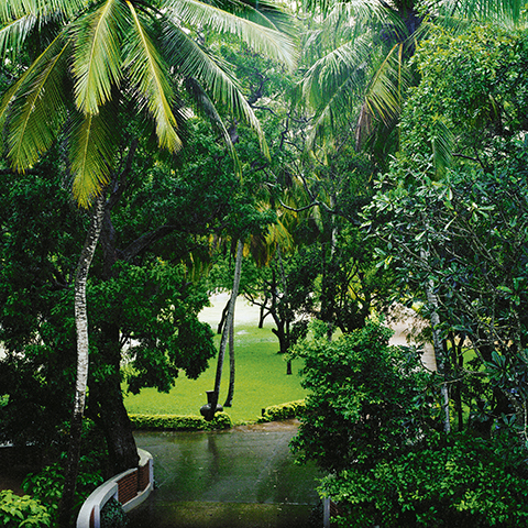 Kerstin Hamilton: Driveway in hotel park.