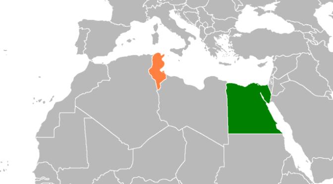 Den arabiska vårens motsatser