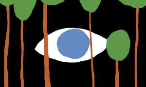grön energi miljö öga träd övervakning skog natur