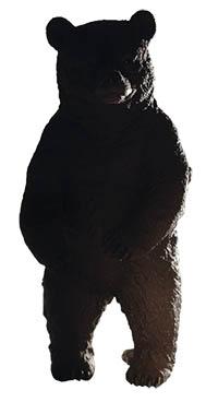 björn otto d webb