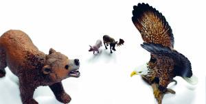 nato björn örn ryssland usa natur djur webb