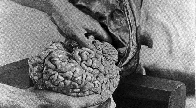 Vår ovetenskapliga tid