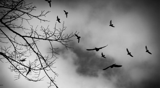 Om konsten att fly(ga) i tid och rum