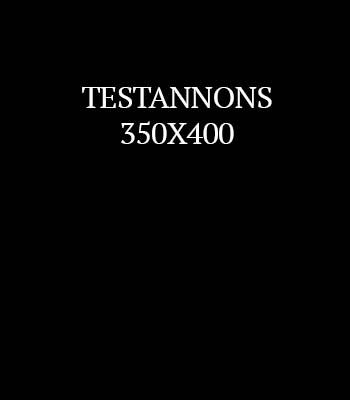 TESTANNONS2.jpg