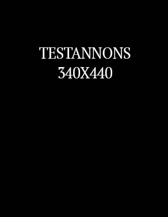 TESTANNONS3.jpg