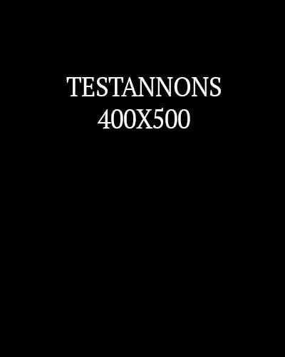 TESTANNONS4.jpg